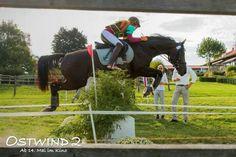 Two Horses, Black Horses, Hanna Binke, Horse Dance, Riding Stables, Black Stallion, Cross Country, Whisper, Animals And Pets