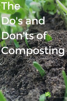 I just started composting for the first time. I can't wait until I have some fresh compost to add to the dirt in my garden which I'll be planting in a couple of months.