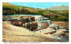 Yellowstone National Park Wyoming 1915 Mammoth Hot Springs Terraces Postcard