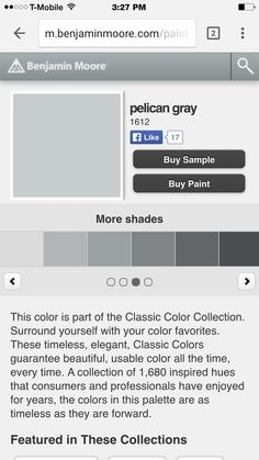 Looking for the perfect Gray. Is this it?