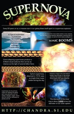 Supernova Infographic Every 50 years or so, a massive star in our galaxy blows itself apart in a supernova explosion.(Illustration: NASA/CXC/M. Cosmos, Earth Science, Science And Nature, Space And Astronomy, Astronomy Facts, Astronomy Science, Planetary Science, Hubble Space, Space Telescope