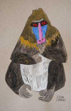 Baboon Lidia chico