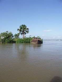 French Guiana Saint Benoit, Saint Quentin, Photos Voyages, West Indies, Madagascar, South America, Europe, Memories, French