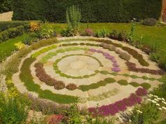 what an amazing way to grow herbs - love the way the colours are grouped and the variable scale of the plants