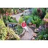 A long town garden divided into themed garden rooms and full to the brim with edible produce