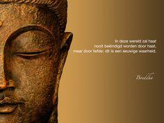 In deze wereld zal haat nooit beëindigd worden door haat, maar door liefde; dat is een eeuwige waarheid. / Boeddha