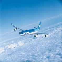 Air Tahiti Nui 's  airbus A340 #flytotahiti