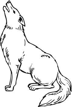 Coyotes Howling in Desert  Animal Colouring Pages  Pinterest