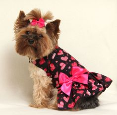 Valentine Hearts Dress for the Valentine's Day Yorkie.