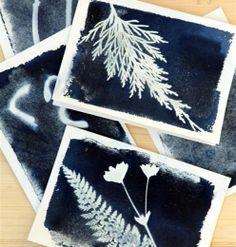 Sun Print Cards