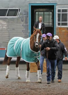 California Chrome arrives safe and sound in Kentucky