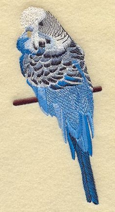 Budgie Parakeet in Blue  Embroidered Linen by EmbroideredbySue, $14.99 pretty feather detail