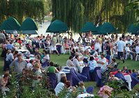 Dining on the banks of the Vaal River on the Stonehaven lawns Lush Lawn, Lawns, Acre, South Africa, Dolores Park, Cruise, Boat, River, Dining