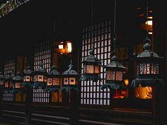 奈良 夏の夜