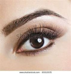 Image Search Results for eye makeup for brown eyes and brown hair make-up-for-wedding-day