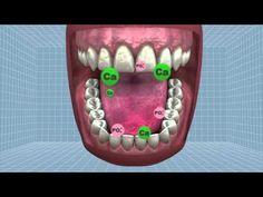 Self-Healing Teeth? UK Scientists Develop New Pain-Free Cavity Treatment [The Future of Medicine: http://futuristicnews.com/tag/future-medicine/]   Repinned by @michaelgleiber