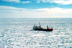 El dique de seguridad de la Antártida está en peligro