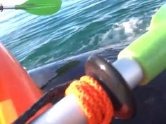 Whale gently lifts kayakers out the water - GrindTV.com And you could just put on my tombstone that I died of happiness.