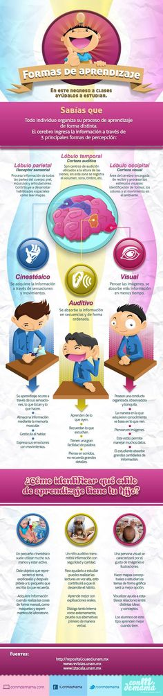 Aprendizaje3FormasPercepciónCerebral-Infografía-BlogGesvin