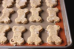 Pumpkin, Peanut Butter, and Bacon Dog Treats - hmm, wonder if I can figure out substitutes to make these grain free...
