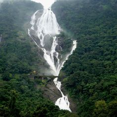 Dudhsagar Falls, India  Dudhsagar Falls (literally meaning The Sea of Milk in marathi and konkani) is a tiered waterfall located on the Mandovi River in the state of Goa, India, on Goa's border with the state of Karnataka.