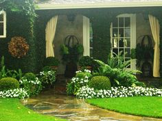 Soothing green white garden .... large fern ... iron spheres in urns ... boxwoods ... porch ...