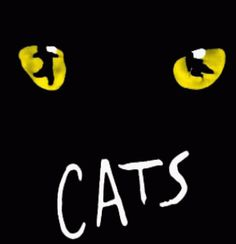 """Saw it twice in the 80's in Chi-town! And still feel  """"Oh, well I never, was there ever A cat so clever as magical Mr. Mistoffelees"""""""