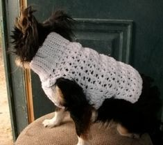 63 Ideas for crochet easy dog sweater patterns - JFK TFT Crochet Dog Sweater Free Pattern, Crochet Dog Patterns, Knitting Patterns, Pdf Patterns, Sweater Patterns, Free Knitting, Small Dog Sweaters, Cat Sweaters, Crochet Sweaters