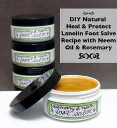 DIY Natural Homemade Heal and Protect Lanolin Foot Salve Recipe with Neem Oil and Rosemary