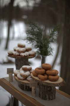 Woodsy party and donuts