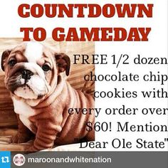 #Repost from @maroonandwhitenation---S/O to @flowersbythebunch for posting this and for being part of the Maroon & White Nation.