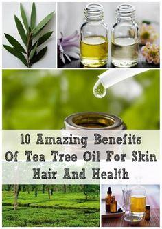 10 Amazing Benefits Of Tea Tree Oil For Skin  This little guy can be a miracle product and is one of the only effective treatment methods for Hidradenitis Suppurativa.