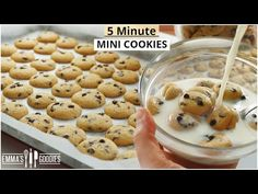 YOUR new FAVORITE way to eat Cookies! 5 minute Mini Chocolate Chip Cookies - YouTube