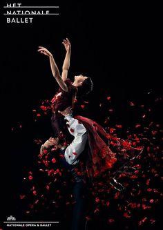 Het Nationale Ballet - Dutch National Ballet La Dame aux Camélias John Neumeier