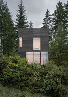 This Little House in Washington Has Mighty Big Ties to Nature #washington #hometour #moderncabin #exterior