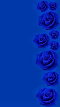By Artist Unknown. Blue Roses Wallpaper, Blue Wallpaper Iphone, Blue Wallpapers, Cellphone Wallpaper, Flower Wallpaper, Royal Blue Wallpaper, Love Blue, New Blue, Blue Green