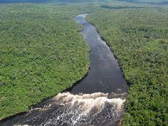 Rio Amazonas. Características do Rio Amazonas - Brasil