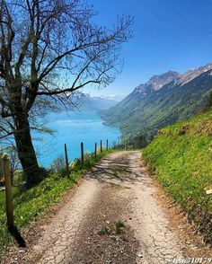 Brienz, Schweiz – – Famous Last Words Beautiful World, Beautiful Places, Landscape Photography, Nature Photography, Beautiful Landscapes, The Great Outdoors, Wonders Of The World, Countryside, Paths