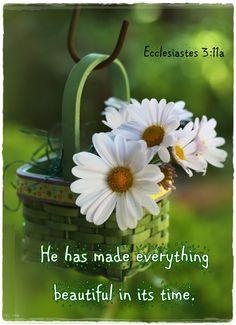 In His kingdom...