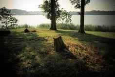 佐鳴湖自然作品展の作品募集が始まっています。写真だけでなく絵画や短歌、彫刻など幅広い作品で佐鳴湖...