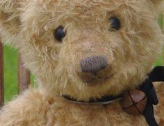 Cameron+by+Hampton+Bears