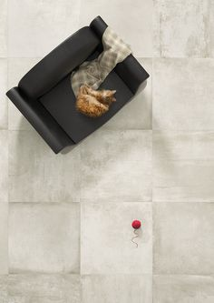Upgrade Bianco vloertegel beton look cm grijs mat Interior Photo, Concrete Floors, Bath Caddy, Creme, Spa, Lily, Flooring, Montreal, Delivery