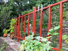 Google Image Result for http://www.ecolandscaping.org/wp-content/uploads/2012/06/custom-mild-steel-and-aircraft-cable-trellis-for-espalier.350.jpg