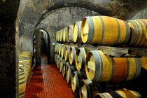 Chamonix wne cellar in Franschhoek