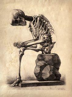 Anatomie Vintage Reproduction impression. Assis par curiousprints