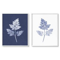 Modern Botanical print set - Printable Art - Blue Fern Prints. This diptych art set is based on the early photographic technique cyanotype (chemical treated paper exposed to sunlight with objects on it) prints of 19th-century photographer William Henry Fox Talbot.  For these art printables you will receive downloadable files (no physical item will be shipped):  • 8 x 10 inch set - Zip file containing PDFs and Jpeg files with trim guides (thin gray line on the outside of the image) and Jpeg…