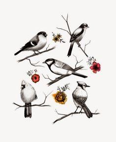 Imprimolandia: Estampados de pájaros Bird pattern