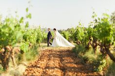 Wedding in Provence : bride and groom walking through the vineyards. Photo by Reego Photographie