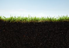 Soil Analysis - Scapes Incorporated http://www.scapesincorporated.com/services/tree-care-and-services/soil-analysis/