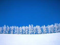Mooie Sneeuw Achtergronden   Bureaublad Achtergronden